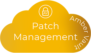 product name: patch management